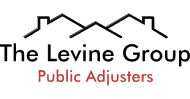 The Levine Group Inc